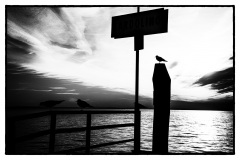 Lago di Garda 02