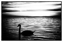 Lago di Garda 05