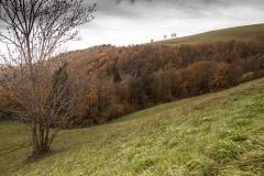 181111_w Lessinia autunno